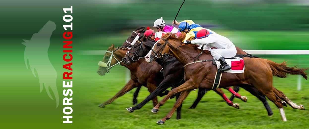 Horse racing betting utah eurosport elite betting
